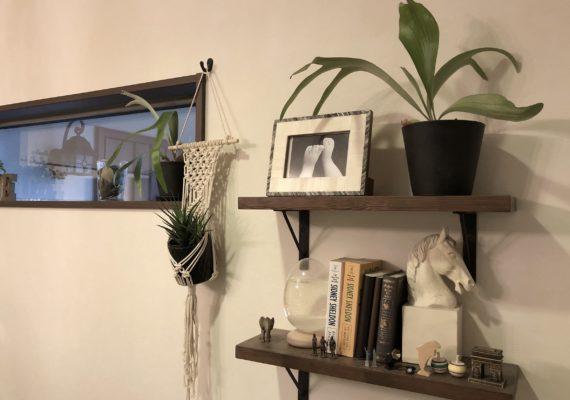 たくさんの植物と家族の想い出が飾れる棚